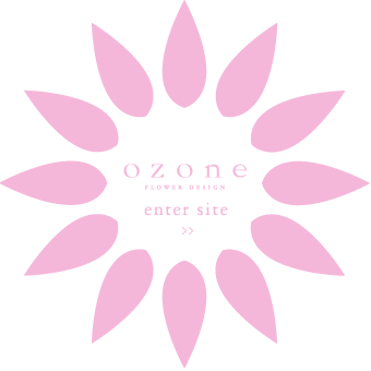 ozone flower design ENTER »